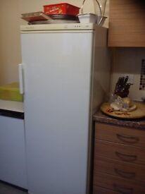 6ft freezer proline, frost free