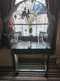 Budgies an new cage on wheels