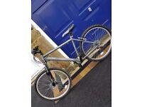 Raleigh Mens Mountain Bike