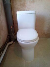 Rimless dual flush toilet suite
