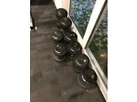 DUMBBELLS ( Ivanko ) please read discription for individual prices thanks )