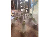 FREE Pendant 5 bulb light