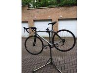 Specialized Allez Expert Road Bike