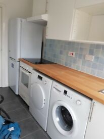 A brand new large garden flat in perfect condition. Own garden with separate kitchen and shower room