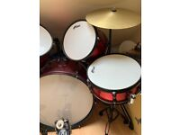 Tiger Beginner Drum Kit with Stool and Sticks