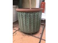 Outdoor plant pot mint with Rosemary tree