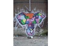 Graffiti Artist Seeking New Projects