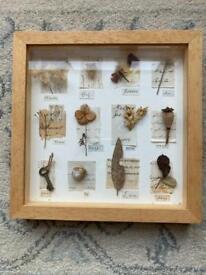 Nature - framed art
