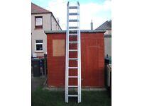 triple ladders + a double ladder