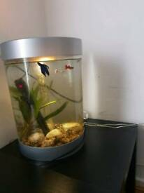 Bio ORB fish tank 35l (INCLUDING 4 FISHES)