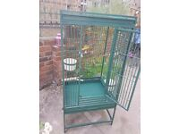 Parrot/budgie cage