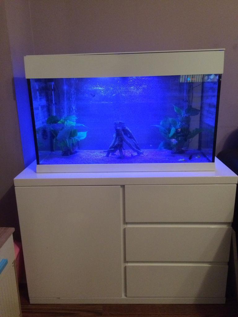 Ferplast Dubai 80 White Aquarium