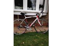 Wilier GranTurismo carbon bike