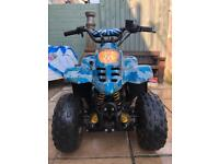 110cc thundercat quad! I WILL ALSO BUY YOUR BIKE OR QUADS CASH!