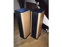 Amp and 2 speakers in great condition