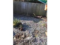 Garden slate