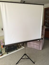 Reflecta lux portable projector screen