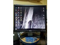 Dell Monitor - Model E198FPB 19 Inch Excellent Condition