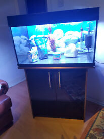 150 liter Aqua one dark wood and black gloss fish stand,,Full set up