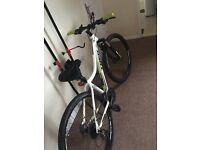Skye SL trek womens mountain bike with accessories