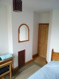 Room with double bed in shared house in Headington available 1/7/18 for one week only
