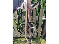 Leather cob bridle