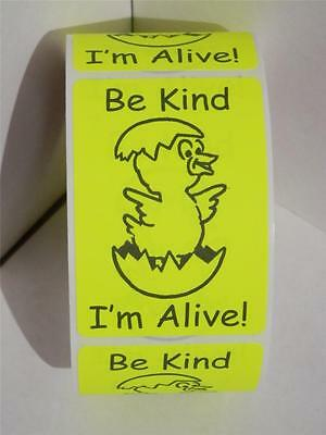 50 Warning Sticker Labels Hatching Eggs Be Kind Im Alive Chartreuse 2x3 Size