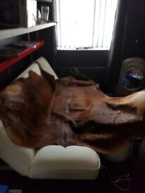 Genuine large cowskin rug