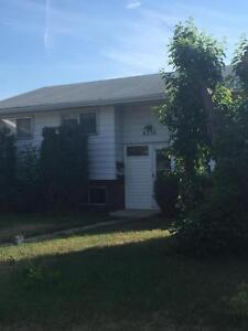 4336 83ST - Large 3Bedroom+Den with a Fenced yard!