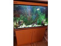 Aquarium 300 ltr