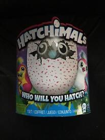 Hatchimal Pengulas Pink brand new