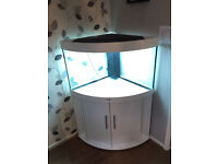 Juwel Trigon 190 Fish Tank and Cabinet in White with External Filter - 1 year old.