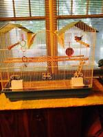 Finch-nice cage