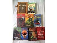 Bundle of 9 books - probably suit an older boy age 8-12yrs.