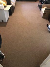 Sitting room carpet