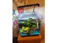 Aqua One 25ltr Fish Tank