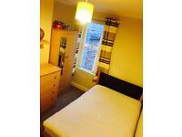 Double room for rent in stranmillis area.