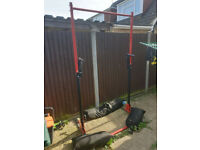 Absolute steal - Genesis Pull-up bar and dip station