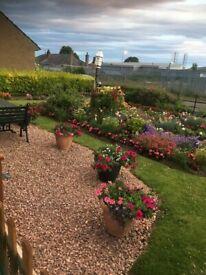 House swap in Craigiebank