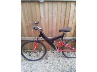 ADULTS RALEIGH MOUNTAIN BIKE AS NEW