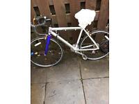 Radius bike