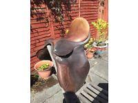 SHIRE Horse Saddle