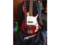 Peavey Bass Guiter. Very little use.