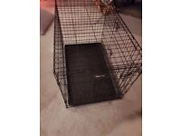 RAC metal dog travel cage with plastic floor. folds flat when not in use