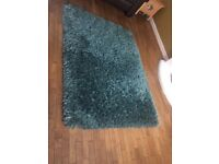 Beautiful Teal Rug. Thick and comfortable. Only had 9 months. Priced for a quick sale