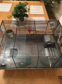 Hamster houses and accessories