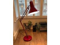 Large Floor Lamp from Made (Brooklyn)