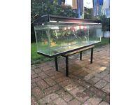 Fish Tank 4 Foot long 108 Litre