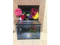 Fish aquarium excellent condition with electric water filter+airpump+toys+food