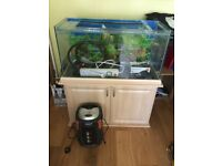 FISH TANK 36 X 15 X 20 & EQUIPMENT INCL FILTER PUMP , AIR PUMP , HEATER ELEMENT POWER TIMER